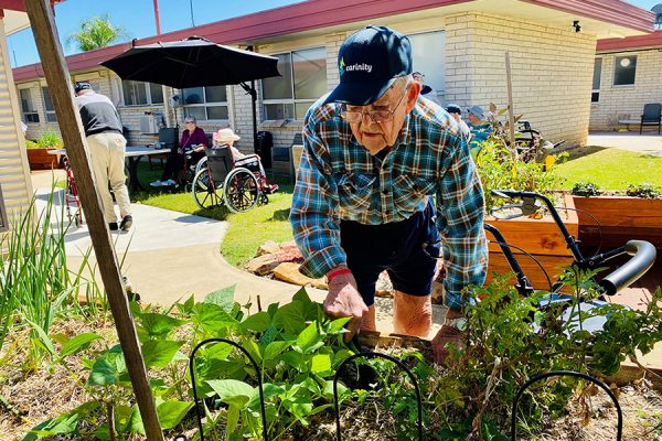 Aged care gardening project sprouts award nomination